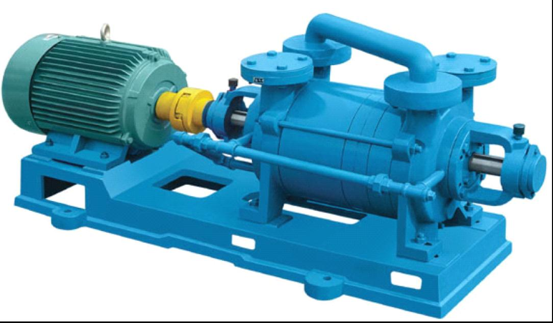 Two Stage Water Ring Vacuum Pump Manufacturer Shanghai