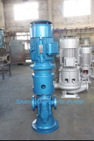 Vertical Double Screw Pump