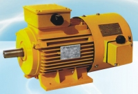 Aluminum Housing Frequency Converter Velocity Modulation Three-Phase Induction Motor